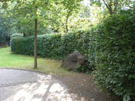 Auch die Hecke wurde gestutzt und in Form geschnitten. Foto: JSG Lantershofen