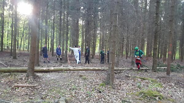 Auf dem Waldgrundstück von Otto Krämer wurde der Stamm mit Hilfe von Reinhold Harst geholt. Foto: Robin Grießel