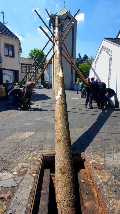 Bilder einer vergangenen Tradition? Die Lantershofener Junggesellen beim Maibaumstellen mit Micken und Muskelkraft 2018. Foto: Robin Grießel